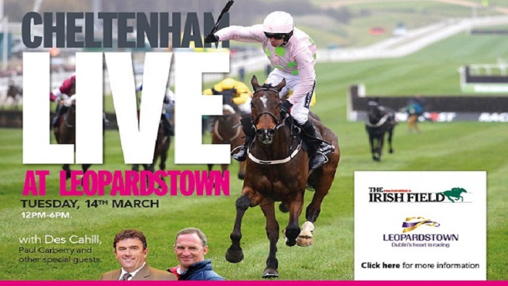 Upcoming Event: Cheltenham Live At Leopardstown
