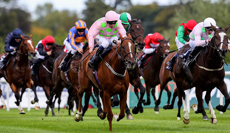 News: News and event updates from Leopardstown Racecourse