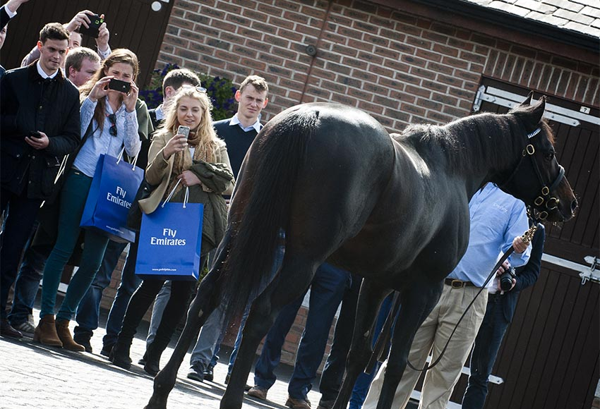 Godolphin Student Initiative : Free Entry for Students on Longines Irish Champions Weekend