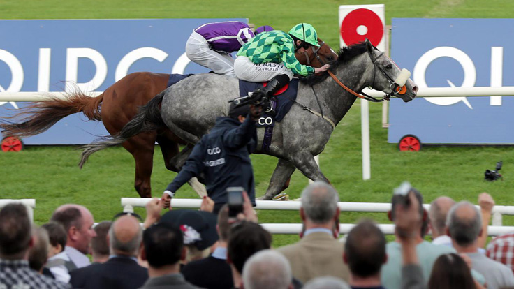 PRESS RELEASES: QIPCO Irish Champion Stakes Attracts Top Class International Entry