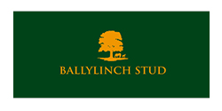 ballylinch_sponsorlogo_twenty