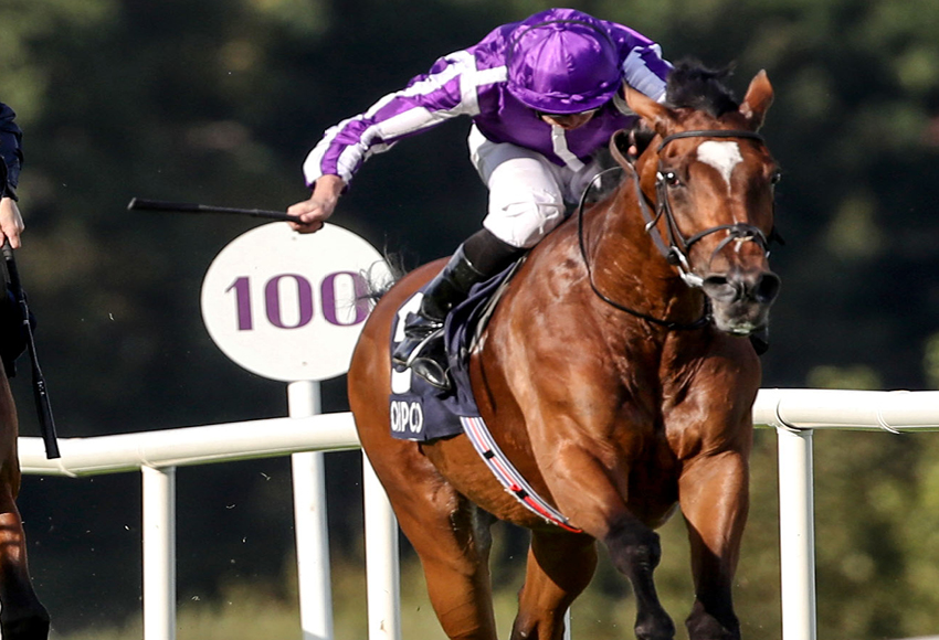 QIPCO_Irish_Champion_Stakes_Nineteen_w